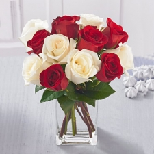 red-and-white-roses